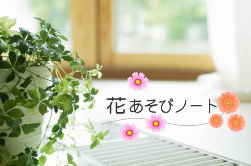 花あそびノート